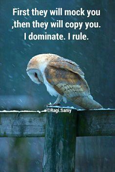 I dominate ... I rule