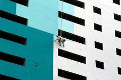 Un pájaro vuela más allá de un obrero, suspendido con una cuerda, mientras se pinta un edificio de nueva construcción en Karachi, Pakistán 17 de enero de 2017. (Foto por Akhtar Soomro / Reuters)