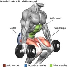 QUADRICEPS - DUMBBELL SQUAT