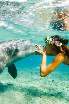 Swimming in the crystal clear blue beach sea ocean water of Hawaii with dolphins and a lei - travel explore the world go on adventure Vacation Destinations, Dream Vacations, Vacation Spots, Summer Vacations, Hawaii Vacation, Vacation Places, Hawaii Travel, Wale, Delphine
