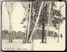 Artist sketchbook, artist journal, tree sketches, tree drawings, value in a Tree Sketches, Drawing Sketches, Art Drawings, Sketching, Artist Journal, Artist Sketchbook, Nature Sketch, Sketchbook Inspiration, Pictures To Draw
