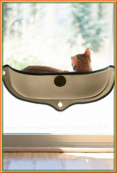 (paid link) Beli cat hammock comfy Online from all brands variety. #cathammock