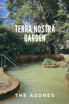 Terra Nostra Garden – The Azores Park Trails, Hiking Trails, Hotel Terra, Thermal Pool, Pictures Online, Portugal Travel, Hot Spots, Hot Springs, Places To Visit