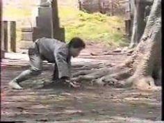 Hatsumi Masaaki Junan Taiso & Hicho Jutsu Bujinkan Soke