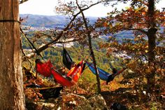 Nothing like a hammock on a perfect fall day <3