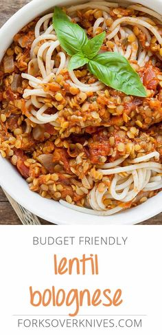A tasty Lentil Bolognese is a must for your recipe arsenal, and this one passes the test for a busy student (or anyone) on a budget.