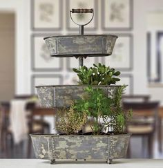 Metal bucket 3 tiered tray in 2019 home, i am there once in awhile кухня. Café Colonial, Coffee Station Kitchen, Rustic Farmhouse Decor, Farmhouse Design, Farmhouse Style, Tiered Stand, Baby Shower Fall, Cafe Interior, The Perfect Touch