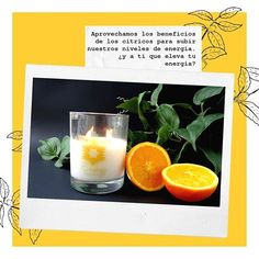 Inspiration Velas de Soya (@inspiration.designlab) • Instagram photos and videos Cantaloupe, Fruit, Instagram, Videos, Photos, Inspiration, Essential Oils, Candles, Pictures