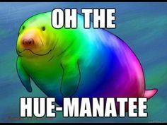 Hue-manatee