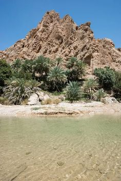 Wadi Bani Khalid in The fabulous Sultanate of Oman 🇴🇲  https://500px.com/ph...