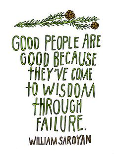 pretty sure i've failed at a few things.  so i must be a little wiser  :)