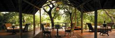 Royal Malewane is a luxury Kruger Park safari lodge.   http://www.xoprivate.com/suites/royal-malewane/  #travel #lifestyle www.xoprivate.com