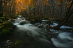 Autumn on the River - The autumn is coming, and waiting for the right moment i would like to share a shot taken last year in the beautiful Appenino Tosco Emiliano.