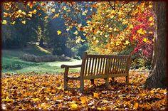 Worldwide Branding Fall-Winter 2013 Newsletter