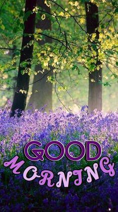 Latest Good Morning, Good Morning Cards, Good Morning Gif, Good Morning Messages, Good Morning Greetings, Good Morning Wishes, Morning Quotes, Good Morning Nature Images, Good Morning Romantic