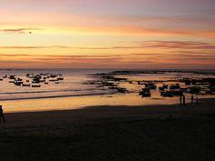 Cádiz en la noche