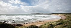 Freshwater West, Pembrokeshire - Where we serve our street food EASTER - SEPT