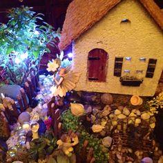 Fairy garden!!