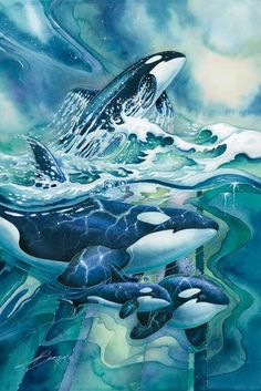 """Orca """"medicine"""" is about community, loyalty, longevity and the willingness to travel away from home. ORCA is called the Lord of the Ocean or the Guardian. Orca Art, Dolphin Art, Whale Art, Watercolor Whale, Watercolor Animals, Orcas, Wale, Delphine, Desenho Tattoo"""