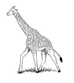 how to draw a cartoon baby giraffe step by step
