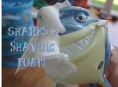 Sharks and shaving foam!