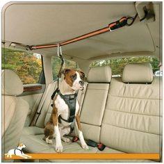 Kurgo Auto Zip Line Leash and Zip Line Combo | Dog | Beds, Crates & Gear | PetFlow