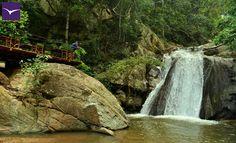 In all things of nature there is something of the marvelous. - Aristotle - #EllaJungleResort #tourism #srilanka #nature #eco #travel #spiritual For More: https://www.facebook.com/ellajungleresort