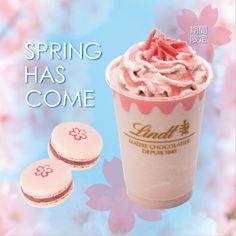 リンツピンク色が春らしい桜のチョコレートドリンクとマカロンを今年も期間限定販売