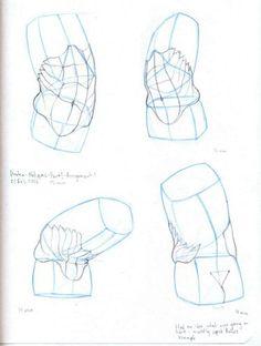 what to draw Anatomy Sketches, Anatomy Art, Anatomy Drawing, Art Sketches, Human Anatomy, Figure Sketching, Figure Drawing Reference, Art Reference Poses, Anatomy Reference