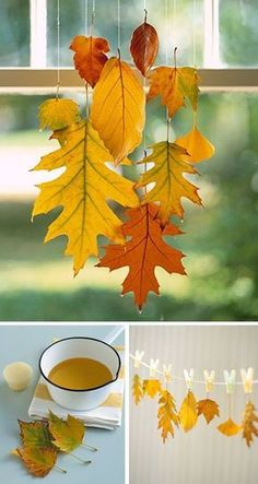 Make autumn decoration yourself - 15 DIY craft ideas for the third .- Make Fall Decoration yourself – 15 DIY Craft Ideas – Preserve Leaves - Autumn Leaves Craft, Autumn Crafts, Nature Crafts, Fall Leaves, Summer Crafts, Leaf Crafts, Diy And Crafts, Deco Nature, Fall Diy