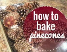 How to bake pinecones. Get all of the creepy crawly bugs out of them and make them smell like cinammon - great idea! #ourtennesseehome #bakingpinecones