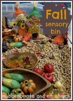 fall sensory bin celebrating the colors, textures and icons of fall