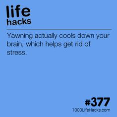 Yawning Helps Your Stress Levels #LifeHack