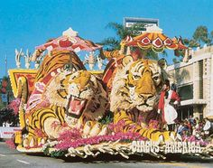 Bucket List -- The Rose Parade - Waiting all night at the Rose Parade for one last time