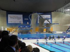 Diving World Cup 2012 (Olympic Aquatics Centre) World Cup 2012, Diving World, Olympics, Centre, London, Park, Travel, Viajes, Parks