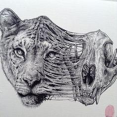 Animals Leave Their Skeletons Behind In Stunning Dark Drawings By Paul Jackson | Bored Panda