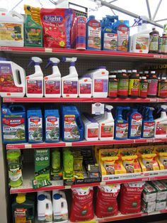 Insecticides to keep your fruits, veggies, trees, and yard safe.