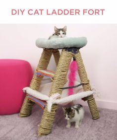 DIY Cat Hacks - DIY Cat Ladder Fort - Tips and Tricks Ideas for Cat Beds and Toys, Homemade Remedies for Fleas and Scratching - Do It Yourself Cat Treat Recips, Food and Gear for Your Pet - Cool Gifts for Cats http://diyjoy.com/diy-cat-hacks