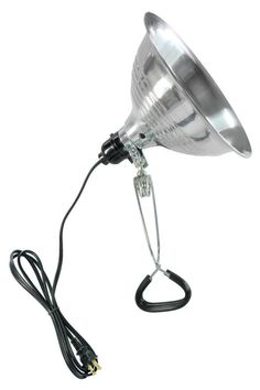 8.5 Inch Clamp Light  This lamp is good for super versatile apartment lighting.  It looks industrial chic on its own or it can be painted very easily.  Most importantly its cheap, moves easily, and looks great!