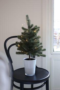 Homevialaura | First Advent | Ton Chair 14 | table christmas tree