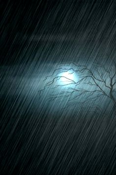 Listen to the rhythm of the falling rain.