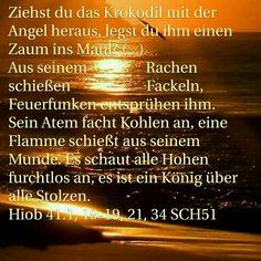 In der KJV heißt es LEVIATHAN, der Drache, das Ungeheuer, .... ? der in der Deutschen Bibel zum Krokodil wird....