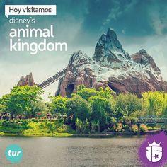 Cambiamos de rumbo y nos vamos a Disney's Animal Kingdom con el grupo #TurquesaF16!   Un nueva temporada mágica con #enjoy15