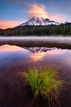 Mt. Rainier Wilderness Campsites