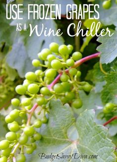 How to Use Frozen Grapes as a Wine Chiller