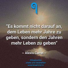#bluequotes #zitate #sprueche #weisheit #leben #liebe