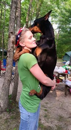 10 Things Only a Doberman Pinscher Owner Would Understand – American Kennel Club