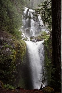 Here are the best waterfalls in the southern Washington Cascades. Pictured: Falls Creek Falls near Carson, Washington oregonlive