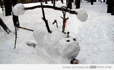 Everyone is getting in on #winter #workouts