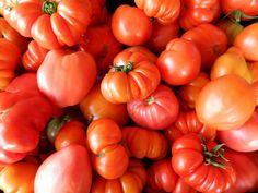 Red Pear, Cuor di Bue, Costoluto Fiorentino, and Marglobe tomatoes.  All Franchi specialties!